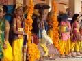 enticingglimpses-of-dasavathara